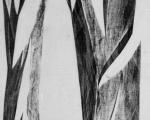 Experimenteller Druck auf Gewebe / Detail